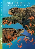 SEA TURTLE COVER 2014