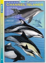 Weekend Naturalist Field Guides_0005