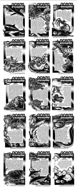 Ocean-Encounters-1_03
