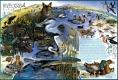 Wetlands-Poster_03
