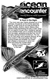 A Hunt in the Night