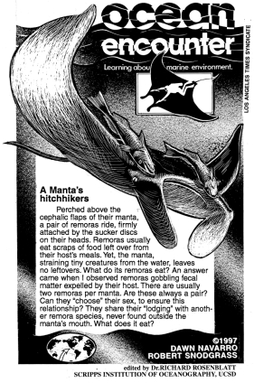 A manta's hitchikers