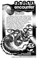 Argonauta nodosa