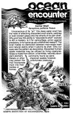 Carrier Shell