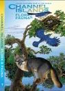 CHANNEL ISLANDS guide