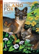 ISLAND FOX guide