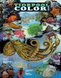 TIDEPOOL CB cover